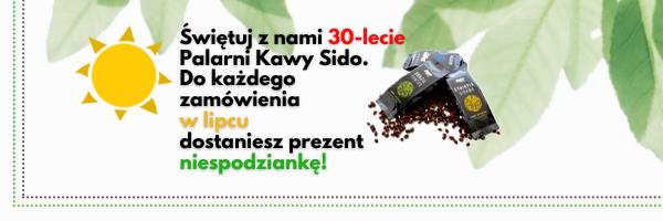 https://sido.com.pl/wp-content/uploads/2021/07/baner-www-Sido-lipiec-4.png